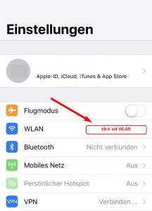 Apple DNS-Settings