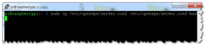OpenVPN - Config sichern