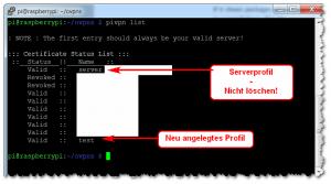 OpenVPN - Profile verwalten
