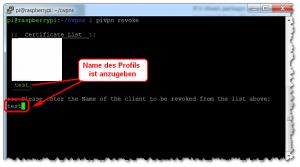 OpenVPN - Profil deaktivieren