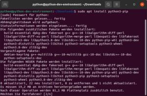 python3-pip installieren